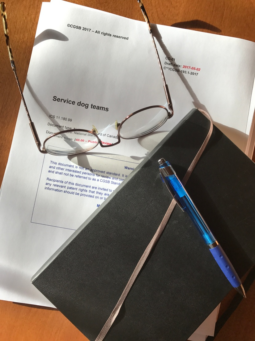 Cover page of the draft service dog team standard document, together with a notebook, pen, and eye glasses